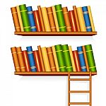 book-library-10042976[1]